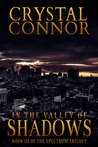 In The Valley of Shadows (Book 3)
