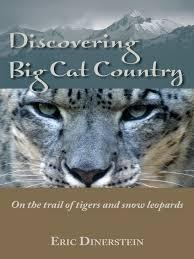 Discovering Big Cat Country