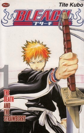 Bleach Vol. 1: The Death and the Strawberry