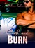 Crash and Burn (Love & Repair, #0.5)
