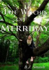 The Witches of Merribay (The Seaforth Chronicles #1)