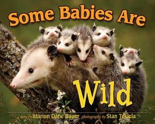 Some Babies Are Wild by Marion Dane Bauer