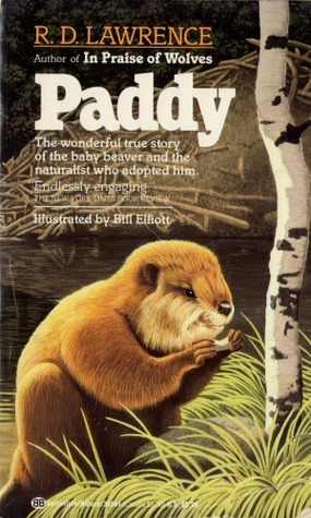 Paddy by R.D. Lawrence