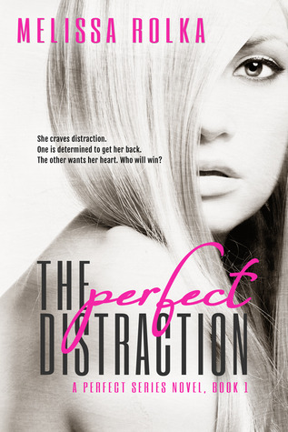 The Perfect Distraction (Perfect #1)