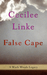 False Cape (A Wash Woods Legacy, #1)
