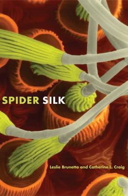Spider Silk: Evolution and 400 Million Years of Spinning, Waiting, Snagging, and Mating