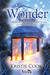 Wonder: A Soul Savers Collection of Short Stories: Part 3 - New Years