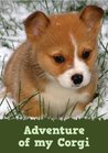 Adventure of my Corgi (A Learn to Read Picture Book for Kids)... by Dp Publishing