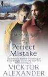 The Perfect Mistake (Mistakes, #1)