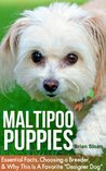 "Maltipoo Puppies: Essential Facts, Choosing A Breeder, and Why This Is A Favorite ""Designer Dog"""