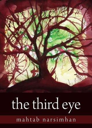 The Third Eye by Narsimhan Mahtab