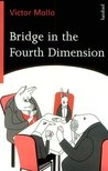 Bridge In The Fourth Dimension