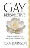 Gay Perspective: Things Our Homosexuality Tells Us About the Nature of God and the Universe