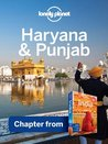Haryana & Punjab: Chapter from India Travel Guide (Lonely Planet Travel Guide)