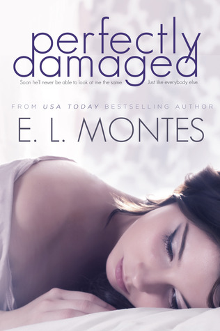 Perfectly Damaged - E. L. Montes epub download and pdf download