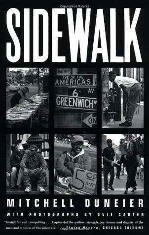cracks in the sidewalk book review