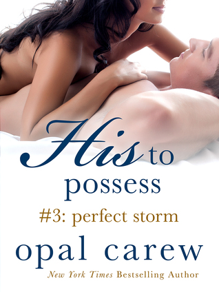 Perfect Storm (His to Possess #3)