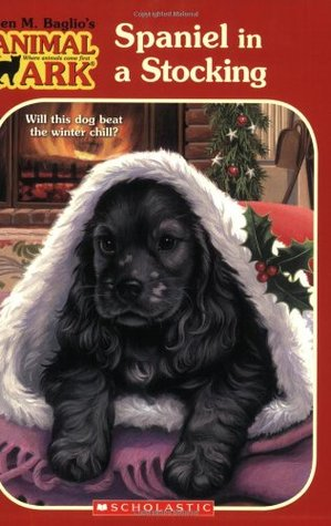 Spaniel in a Stocking by Ben M. Baglio