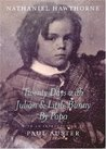 Twenty Days with Julian and Little Bunny by Papa by Nathaniel Hawthorne