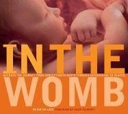 In the Womb by Peter Tallack