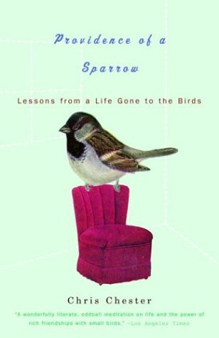 Providence of a Sparrow: Lessons from a Life Gone to the Birds
