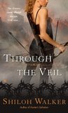 Through the Veil (Veil, #1)