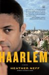 Haarlem: A Novel