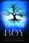 Dream Boy by Madelyn Rosenberg