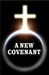 A New Covenant by Erec Stebbins