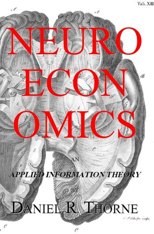 Neuroeconomics: an Applied Information Theory