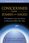 Consciousness from Zombies to Angels: The Shadow and the Light of Knowing Who You Are