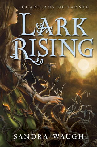 Lark Rising by Sandra Waugh