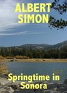 Springtime in Sonora (Henry Wright Mystery #2)