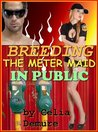 Breeding the Meter Maid In Public
