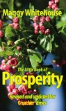 The Little Book Of Prosperity: Your Pocket Guide To Wealth And Happiness