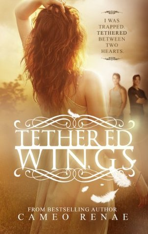 Tethered Wings Hidden Wings 3