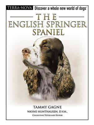 The English Springer Spaniel (Terra-Nova)