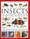 The Illustrated World Encyclopedia of Insects: A natural history and identification guide to beetles, flies, bees wasps, springtails, mayflies, ... crickets, bugs, grasshoppers, fleas, spide
