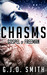 Chasms: Gospel of Freeman