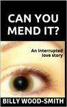 Can You Mend It? by Billy Wood-Smith