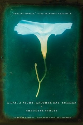 A Day, a Night, Another Day, Summer by Christine Schutt