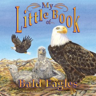 My Little Book of Bald Eagles by Hope Irvin Marston
