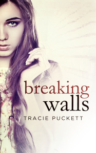Breaking Walls epub download and pdf download