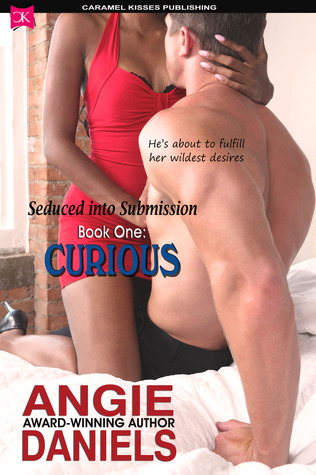 Seduced into Submission: BOOK ONE: Curious