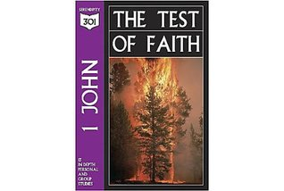 1st John: The Test Of Faith (301 Depth Bible Study)