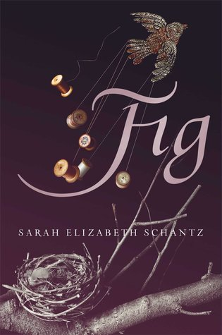 Fig by Sarah Elizabeth Schantz