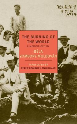 The Burning of the World: A Memoir of 1914