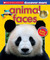 Animal Faces (Scholastic Discover More)