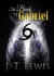 The Book of Gabriel by J.T. Lewis