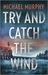 Try and Catch the Wind by Michael  Murphy